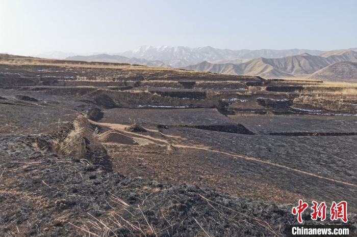 图为甘肃武威市古浪县黑松驿村候某某因祭祀用火不慎,引发山火,山林过火面积达到1660.15亩地。 景玮 摄