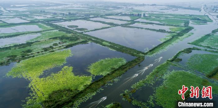 白马湖渔村。金湖县文化广电和旅游局供图