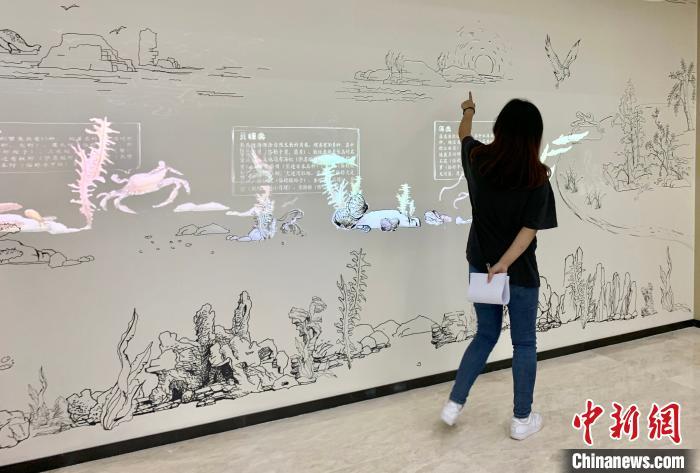 长岛海洋生态文明展览馆立体化展现了海岛独特的海洋自然生态系统。 王娇妮 摄